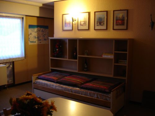 Affitto Appartamento Montagna PASSO DEL TONALE