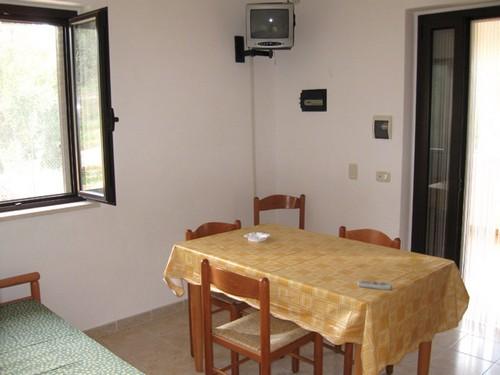 affitto appartamento mare vieste 362 (20100515130504-2010-92460-NDP.jpg)