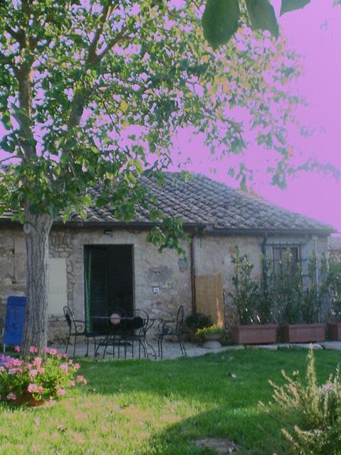 Affitto casa vacanze campagna monteriggioni località strove