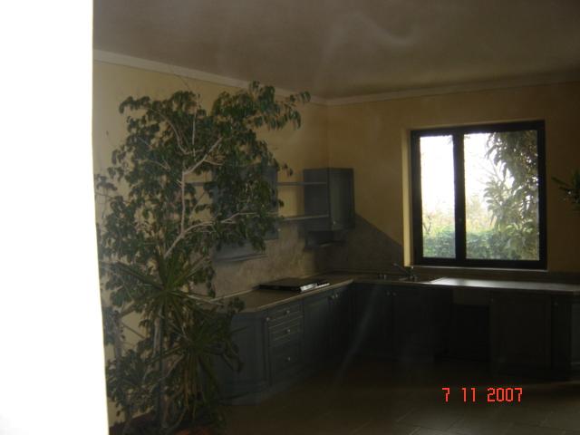 affitto residence lago serle 5710 (20110305170330-2011-36899-NDP.jpg)
