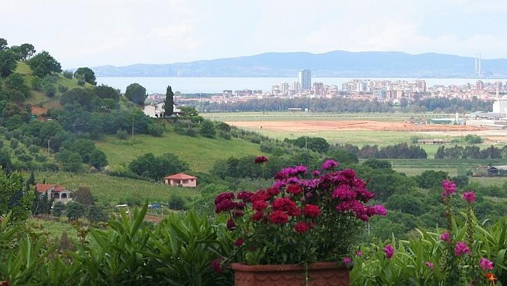 affitto villa mare scarlino 5875 (20110318000307-2011-28547-NDP.jpg)