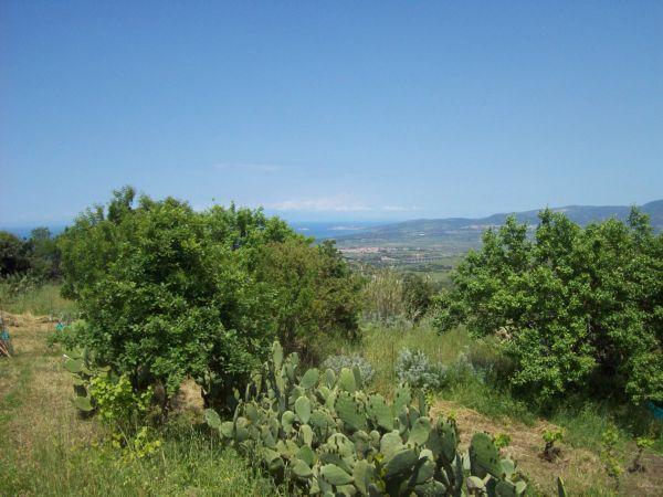 affitto villa mare valledoria 6213 (20110330220329-2011-57238-NDP.jpg)