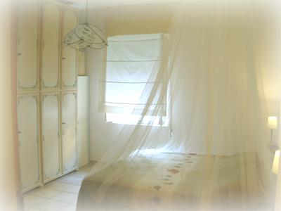 affitto casa vacanze campagna barattipopulonia 6532 (20110426200422-2011-45632-NDP.jpg)