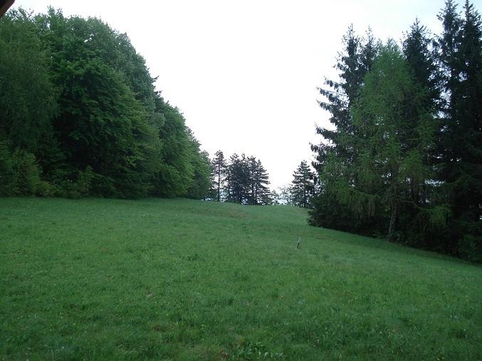 affitto appartamento montagna fai della paganella 6629 (20110428230424-2011-58220-NDP.JPG)