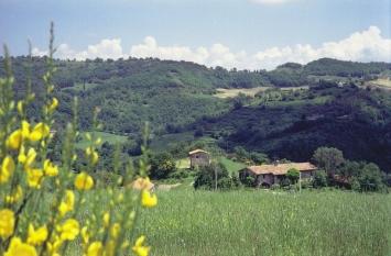 affitto agriturismo campagna gubbio 1654 (20110509180519-2011-32012-NDP.jpg)