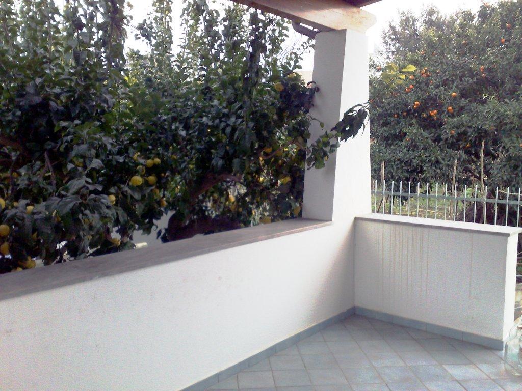 affitto appartamento mare ischia porto 7345 (20120207150231-2012-76612-NDP.jpg)