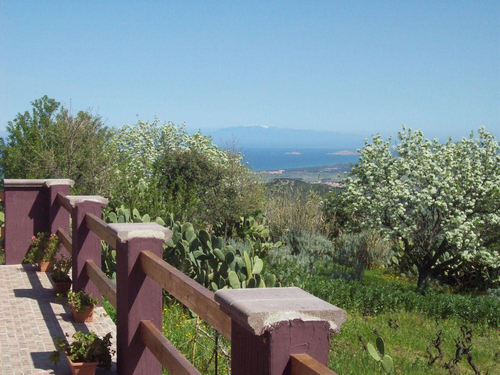 affitto villa mare valledoria 6213 (20130216150244-2013-68171-NDP.jpg)