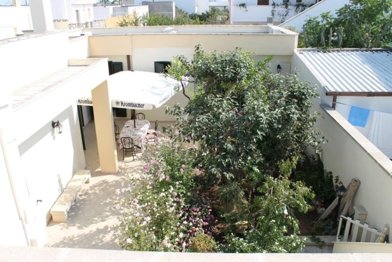 affitto casa vacanze mare cocumola 8431 (20140706180731-2014-18566-NDP.JPG)