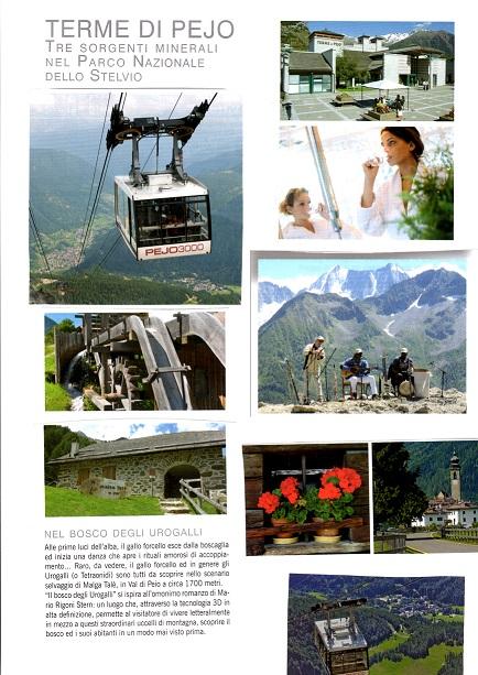 affitto villa montagna peio 8545 (20150427090456-2015-55324-NDP.jpg)