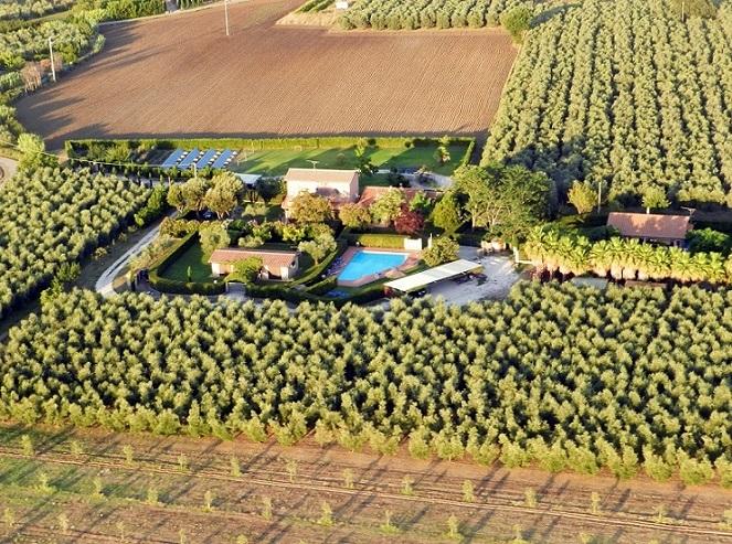 affitto casa vacanze campagna bolgheri 6778 (20180206110222-2018-55971-NDP.jpg)
