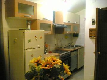 affitto appartamento mare pineto 2215 (2215_2006418123544.jpg)