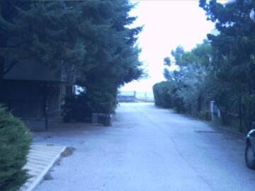 affitto appartamento mare pineto 2215 (2215_20064221527.jpg)