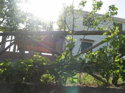 Affitto casa vacanze campagna catenanuova