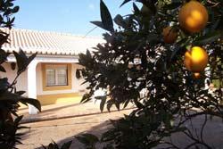 Affitto casa vacanze campagna tavira