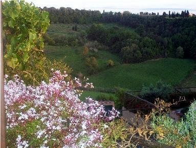 affitto casa vacanze campagna montescudaio 3426 (3426_2009118181030.JPG)