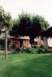 Affitto casa vacanze campagna acqualagna