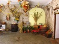 affitto bed breakfast montagna ronzo chienis 851 (851_2008523212512.JPG)